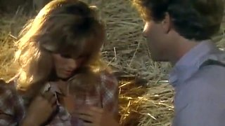 Sex Scenes from Bedtime Stories : The Farmer's Daughter